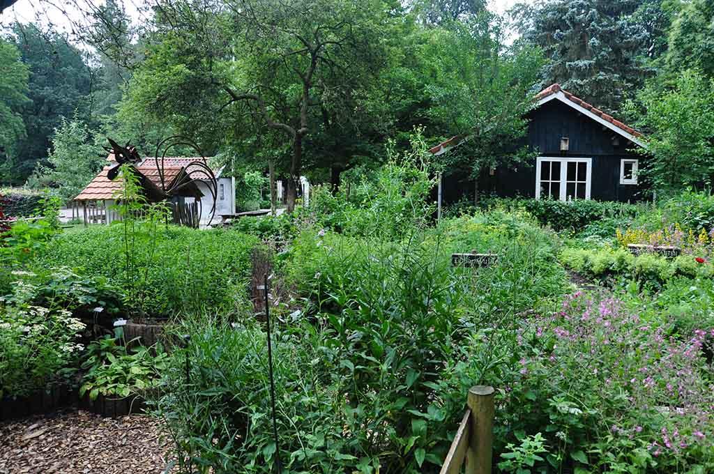 Er zijn verschillende tuinen aanwezig bij De Boswerf.