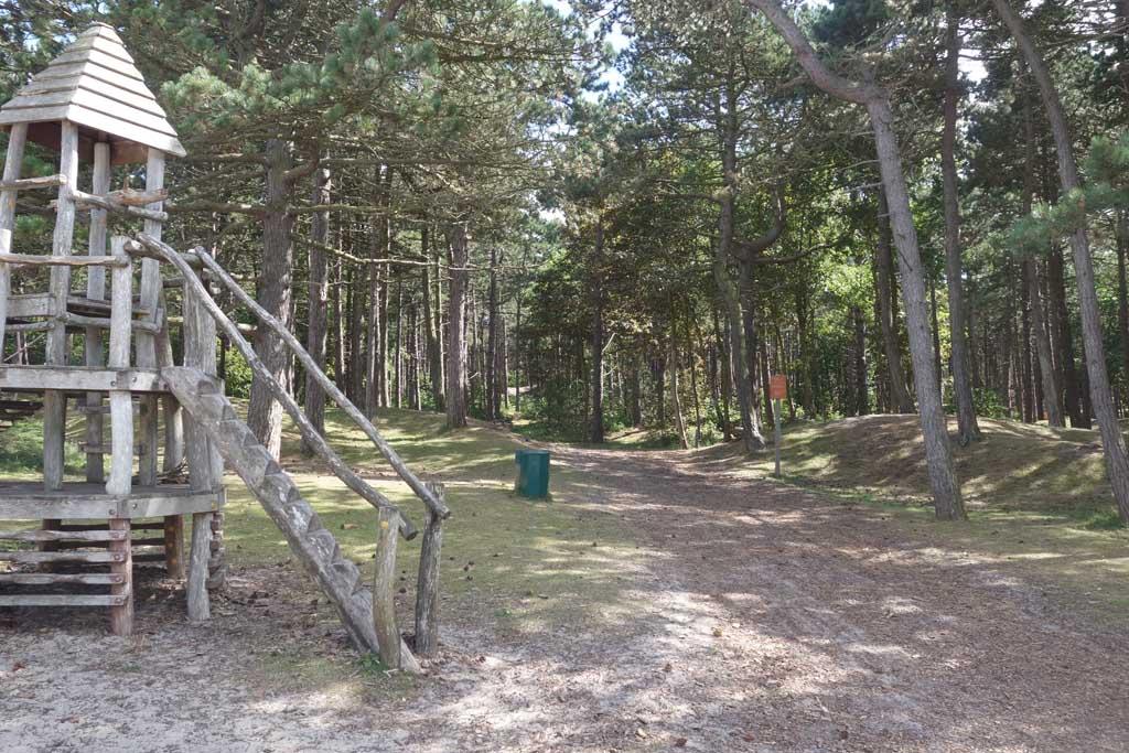 Vanuit het hostel loop je zo het bos in.