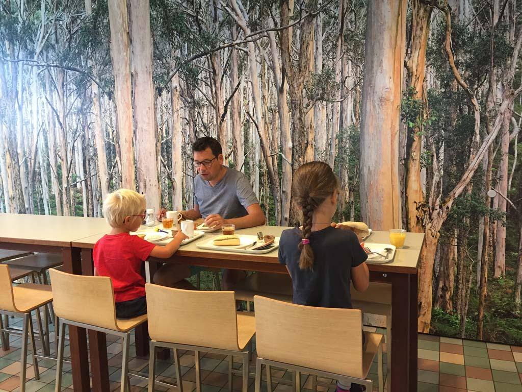 In de ontbijtzaal komen de bomen ook terug.