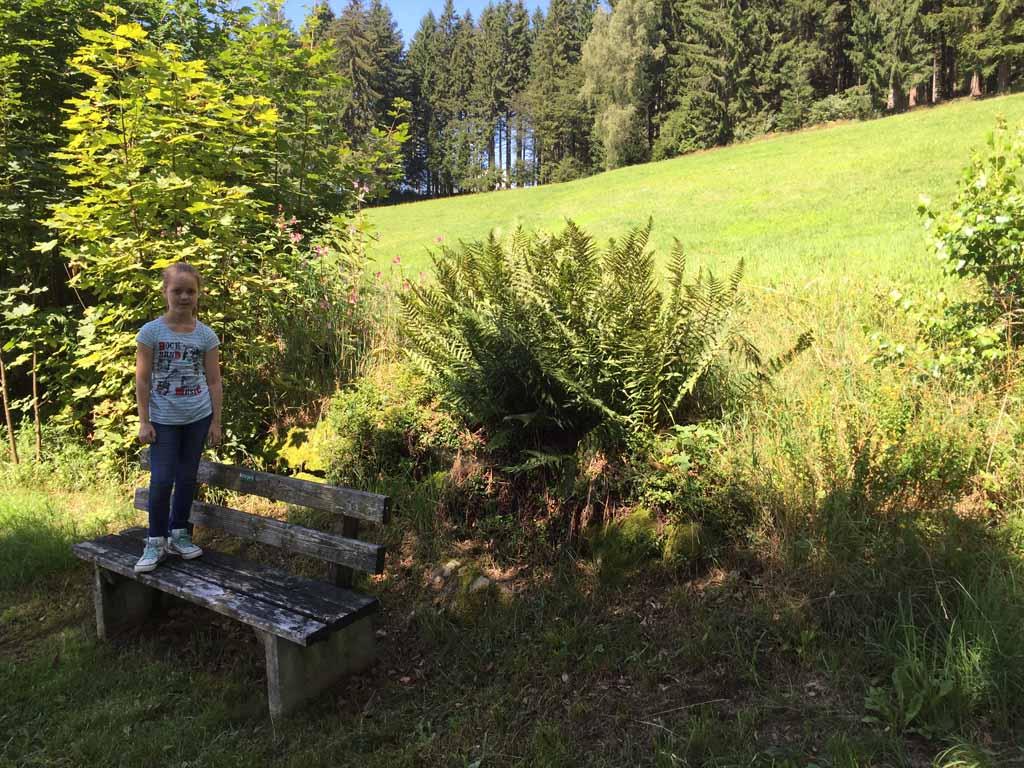 Natuurpark Beierse Woud.