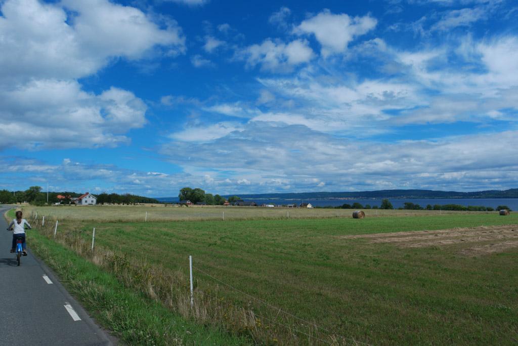 We fietsen terug langs de weilanden.