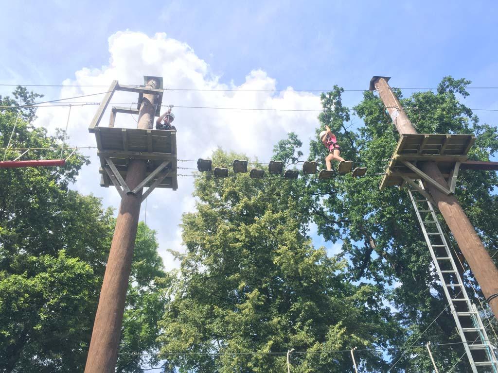 Roos en Bob klimmen er op los.