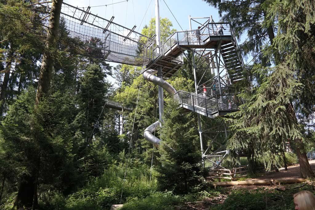 De glijbaan met avonturenbrug midden in het bos.