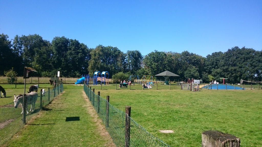 heerlijk buiten spelen bij speel en kinderboerderij ForSpeel En Kinderboerderij Oudleusen