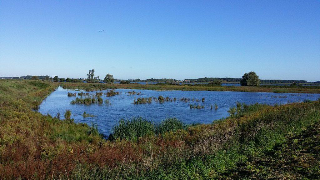 Prachtig waterlandschap.