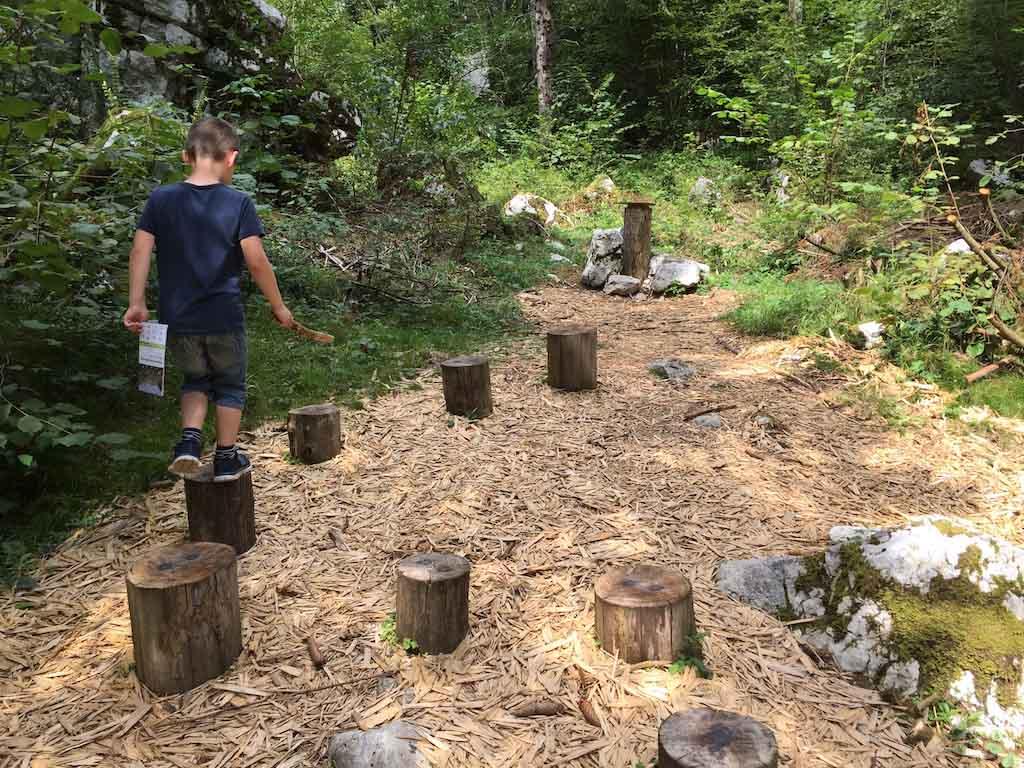 Een dierenspoor volgen dat op de boomstammetjes is gemaakt.