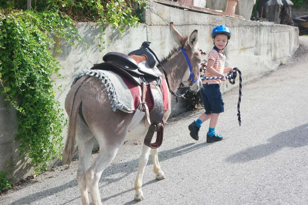 Het eerste stukje omhoog houden we de ezel aan het touw vast.