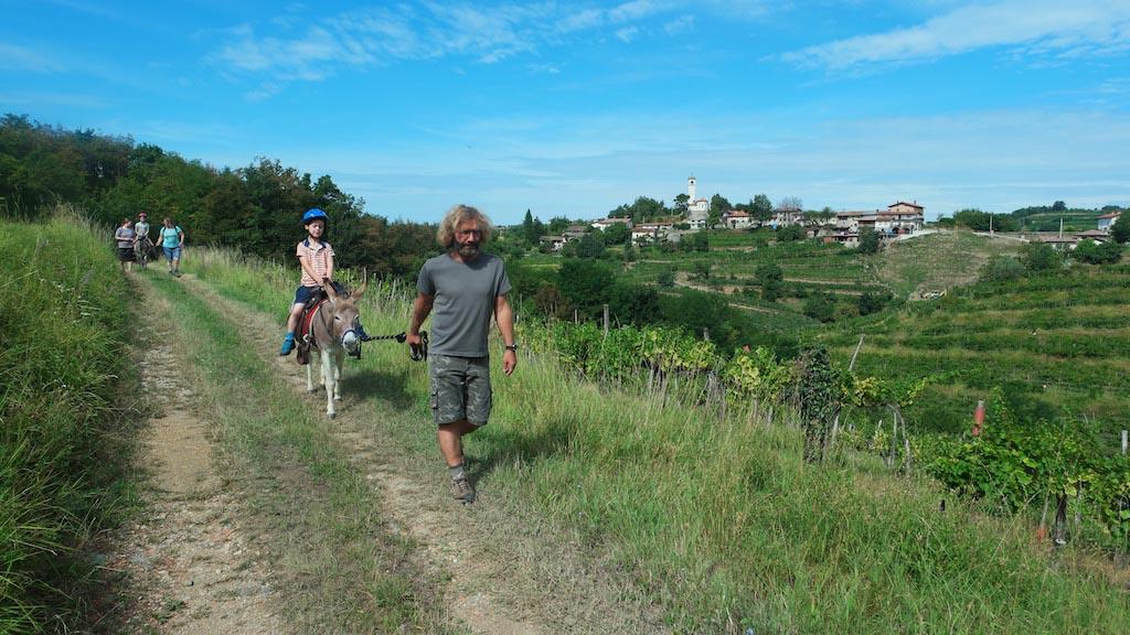 Wandelen langs de wijnranken.