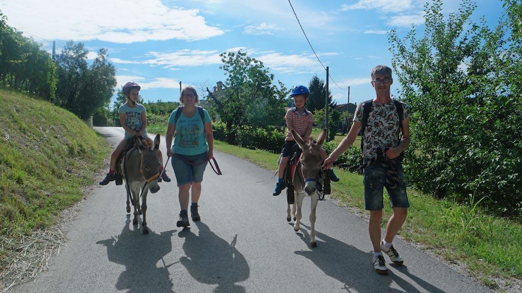 Omdat kinderen op de ezel zitten, is zo'n wandeling ook goed met jongere kinderen te doen.