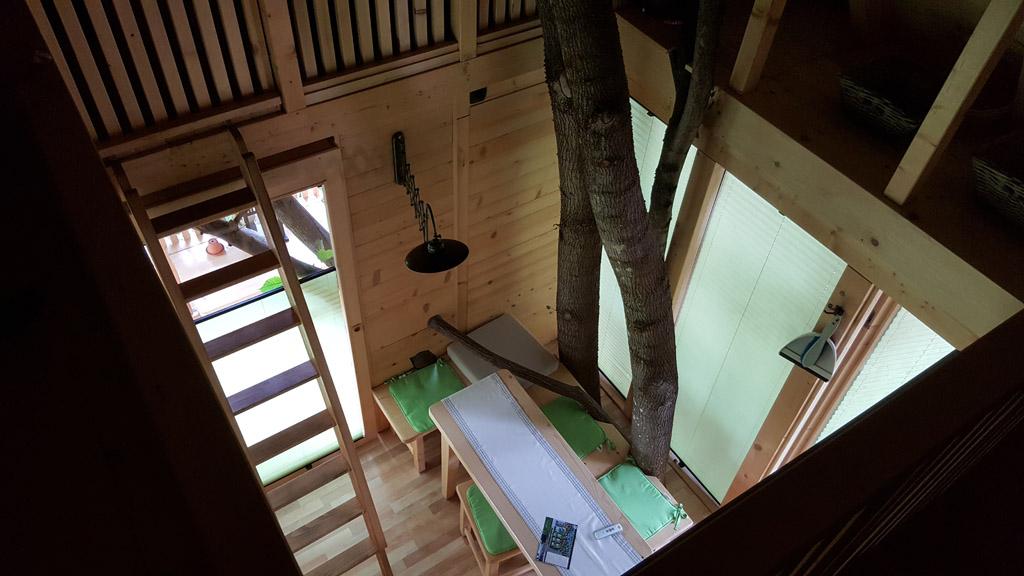 De hut is verwerkt om de boom heen.
