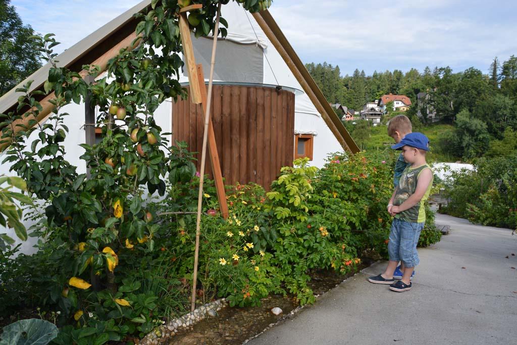 Groente en fruit is vrij te plukken voor de gasten van het resort.