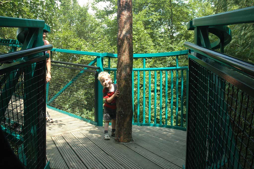 Een bezoek aan het boomkroonpad.