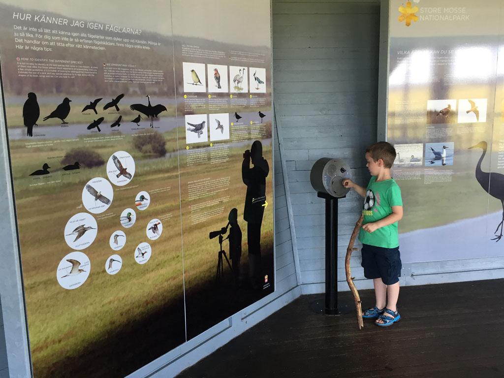 Informatie over de vogels die in het nationaal park leven.