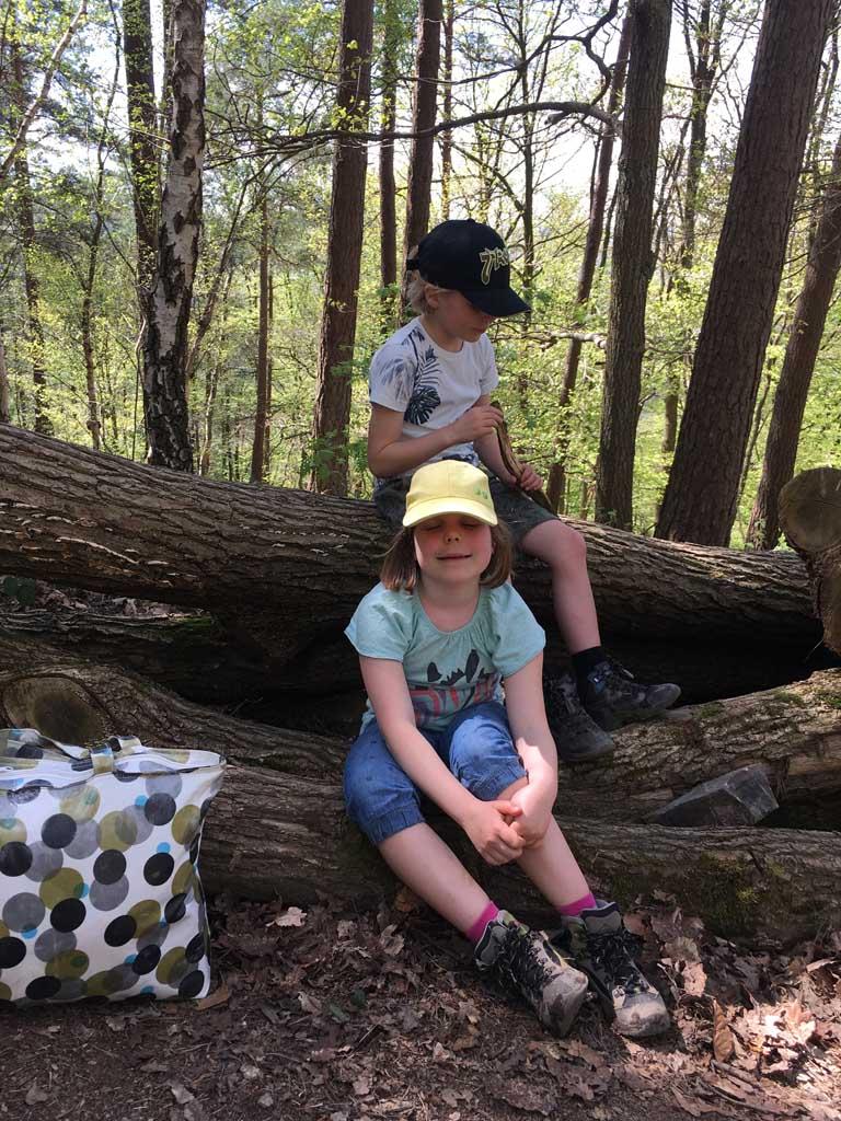 Bij gebrek aan bankjes rusten we uit op een boomstronk.