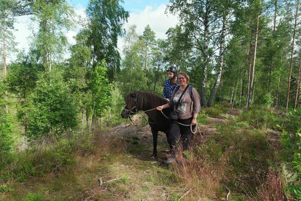 De wandelroute loopt grotendeels door het bos en is licht heuvelachtig.