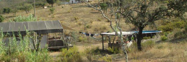 Algarve Safari Lodge in Portugal, dat is genieten van glamping met kinderen