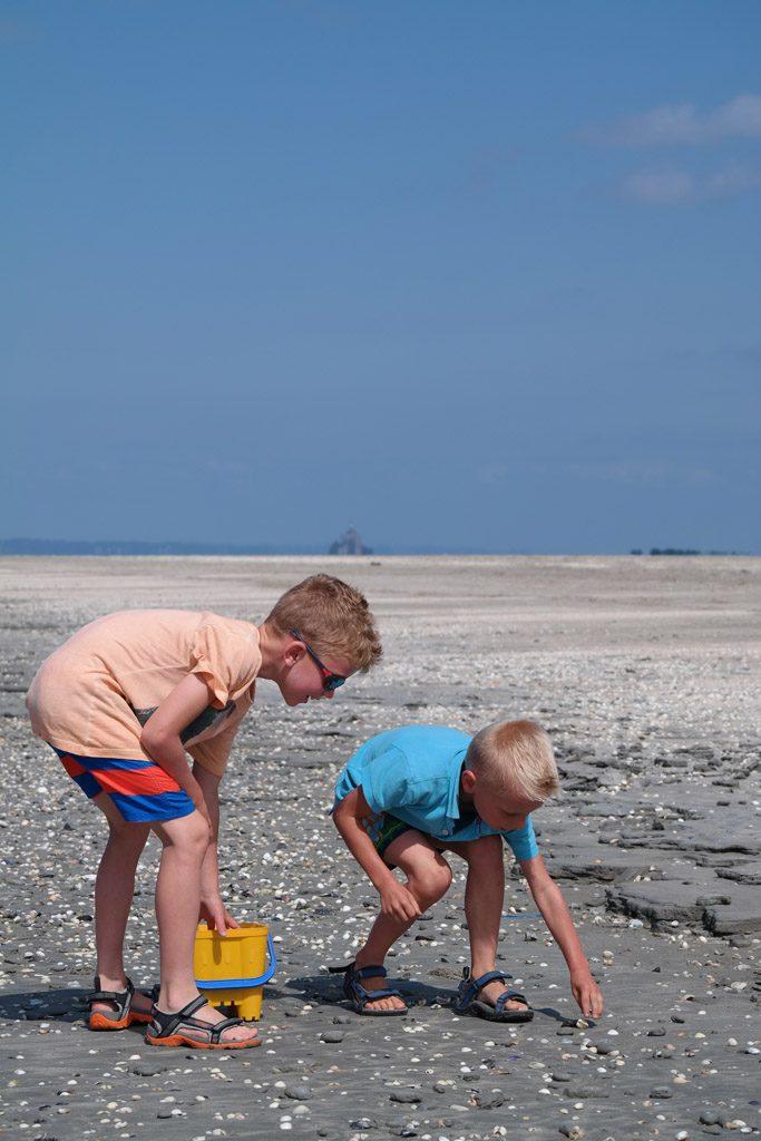 Schelpen zoeken op de oneindig lange stranden met Mont Saint Michel op de achtergrond.
