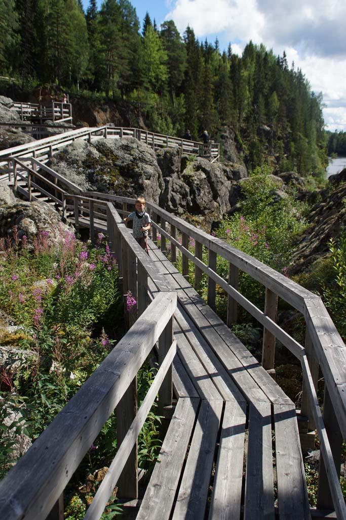 Döda Fallet: Wandelen over de dode waterval, een wandelpad over houten bruggen en planken met uitleg over de waterval.
