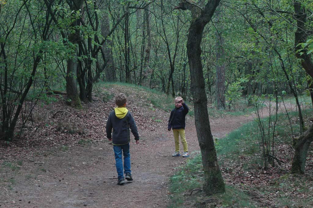 Het begin van de wandeling loopt nog door het bos.
