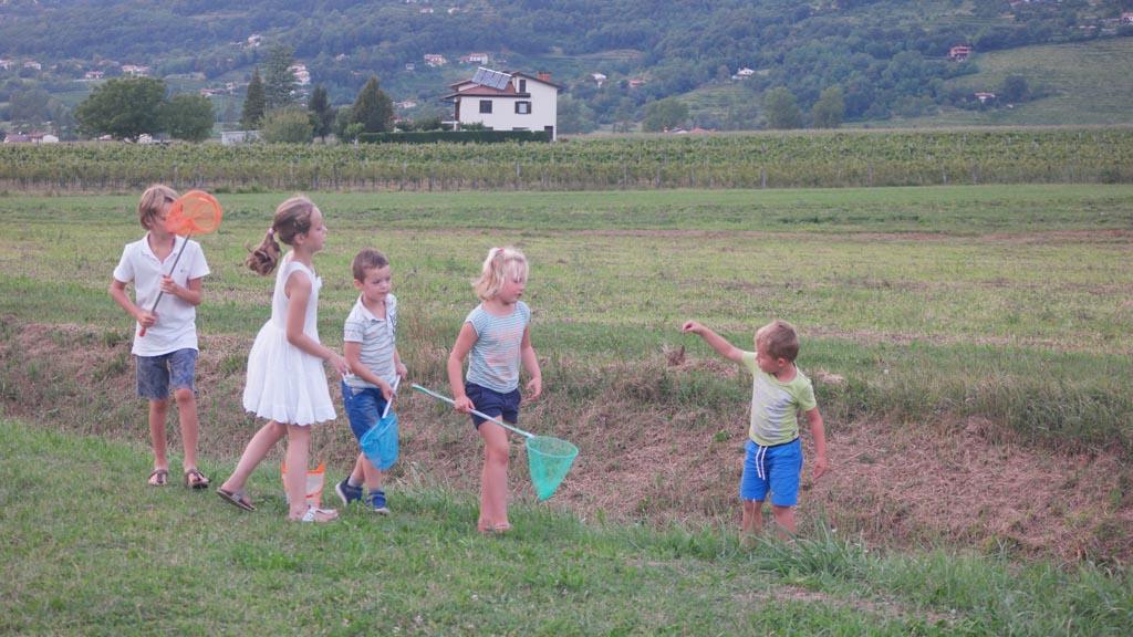 Sprinkhanen vangen samen met andere kinderen op de camping.