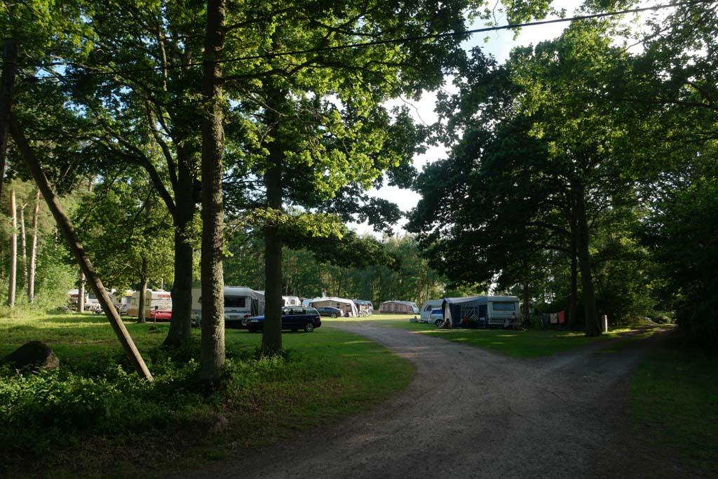 Nadeel is wel dat de auto's over de camping rijden. Door de kronkelige paden is men wel genoodzaakt langzaam te rijden.