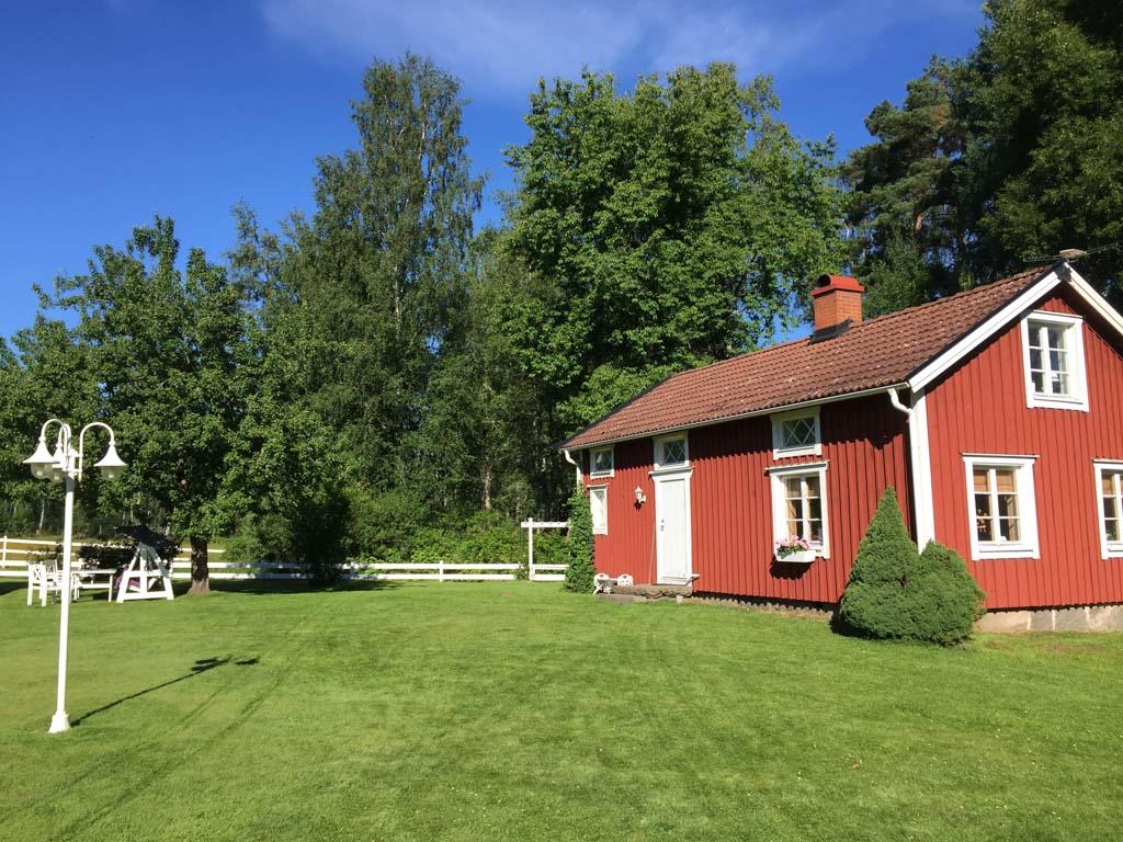 De tuin voor het huis. De automatische grasmaaier is de grootste attractie voor de kinderen.