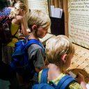 Bezoek de Vikingen en middeleeuws Dublin in interactief museum Dublinia