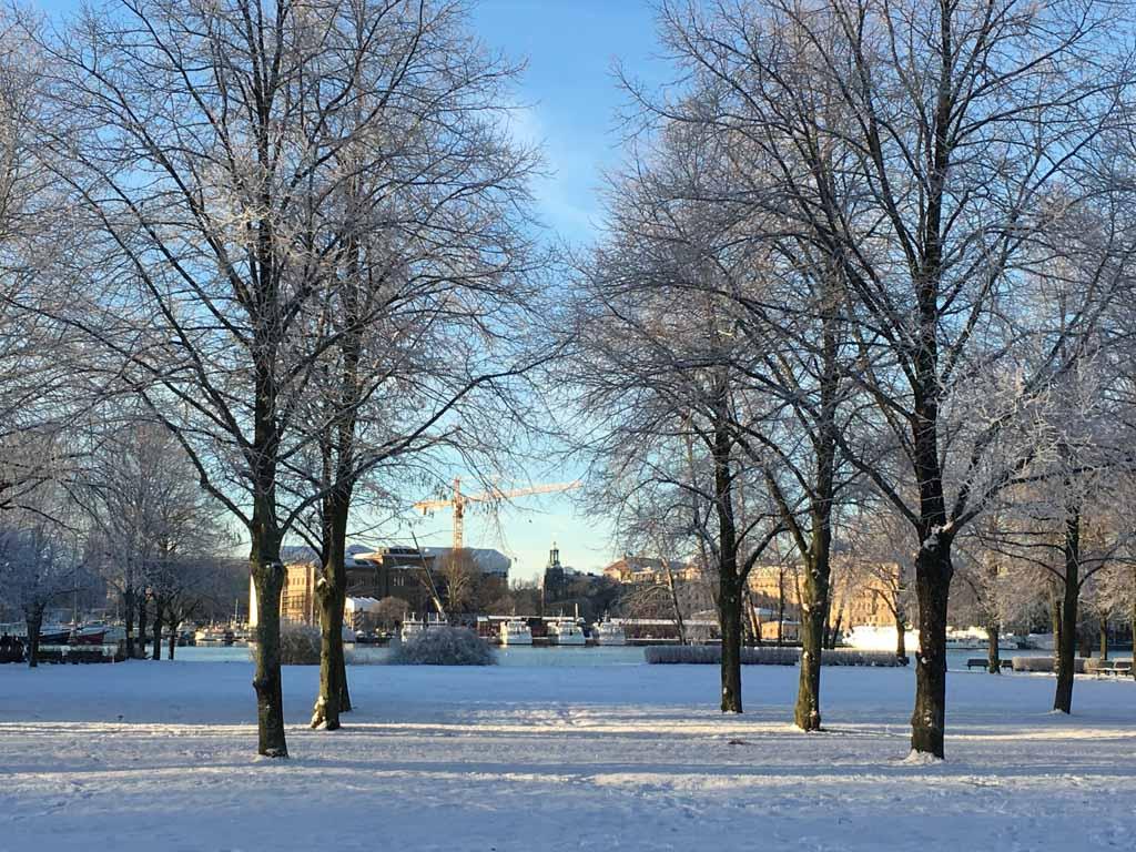 Sneeuw tijdens de winterse stedentrip Stockholm met kinderen.