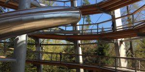 Boomkroonpad in het Zwarte Woud? Ontdek Baumwipfelpfad Schwarzwald in Bad Wildbad
