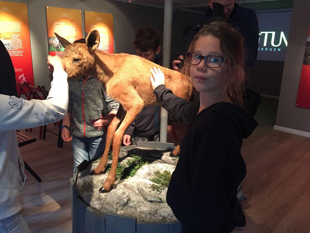 Roos weet niet of goed wat ze van de opgezette baby eland in de toonstellingsruimte in Elgtun moet vinden.