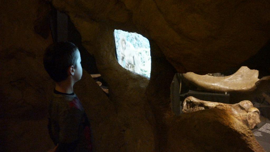 In een donkere grot kijken naar filmpjes over jagen en prooien.