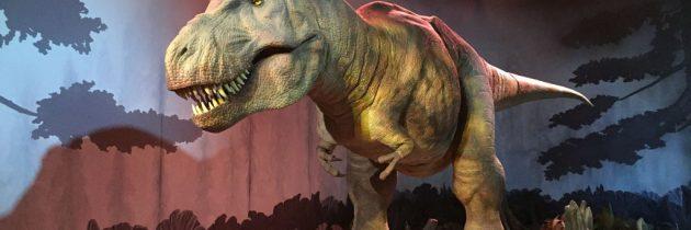 Dino's kijken bij het Natural History Museum in Londen (Gratis!)