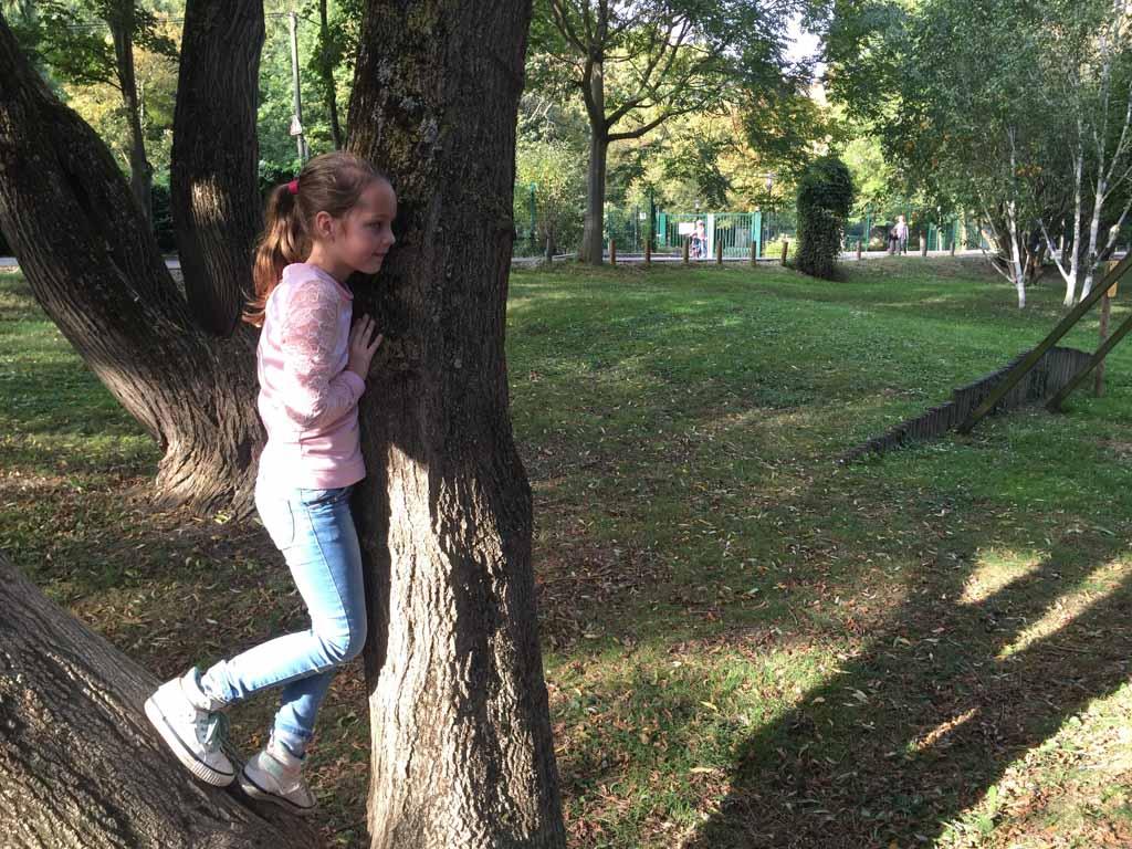 Er staan zelfs bomen waar je in kan klimmen.