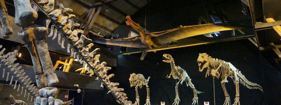 A World of Dinosaurs in het Zweedse Kalmar