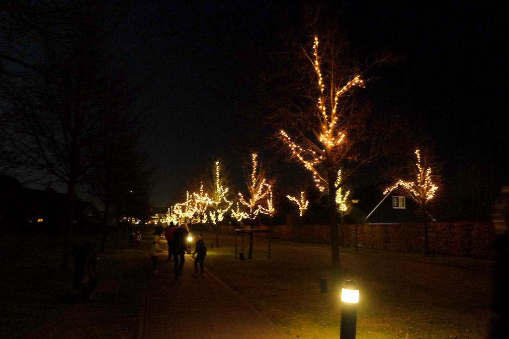 Een mooie laan met verlichte bomen wijst ons de weg naar ons huisje in Hof van Saksen.