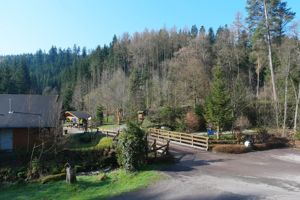 Camping Langenwald ligt heel mooi in het bos.