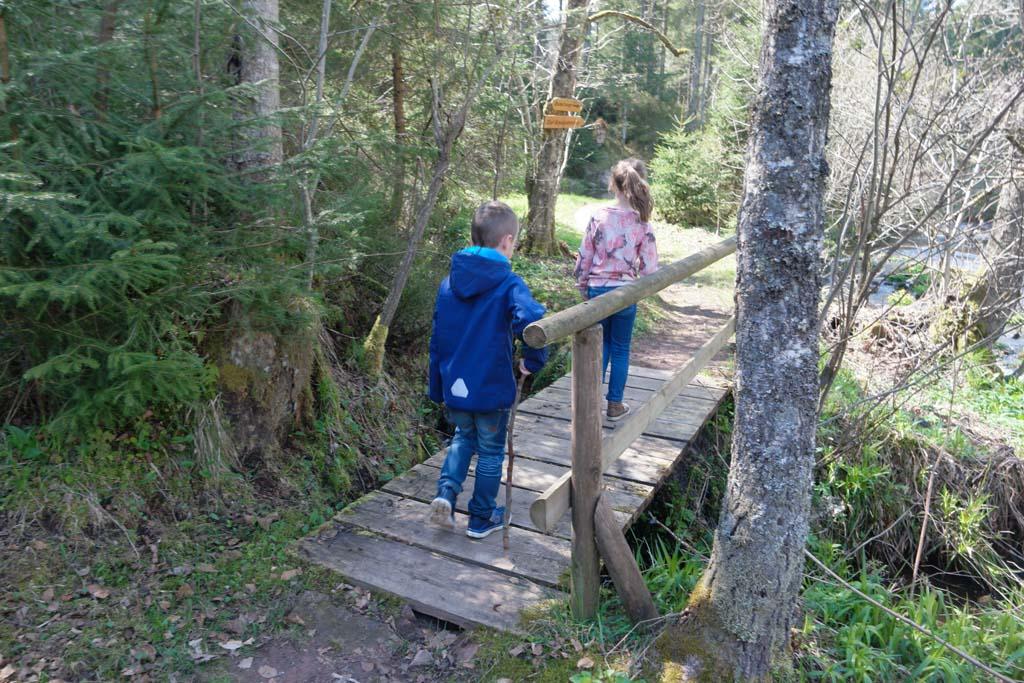 Vanaf de camping loopt een natuurpad direct het bos in.