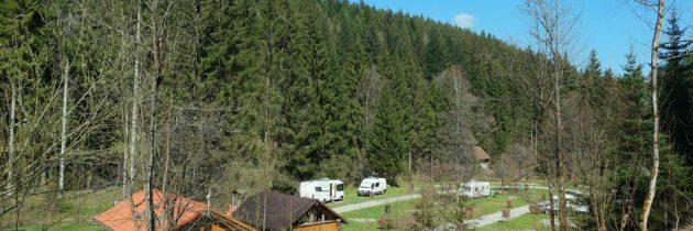 Camping Langenwald in het Zwarte Woud, een natuurcamping met een beekje