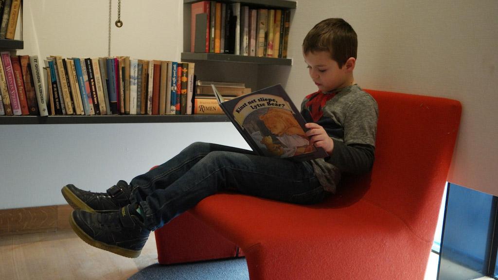 Lezen in een Fries boek.