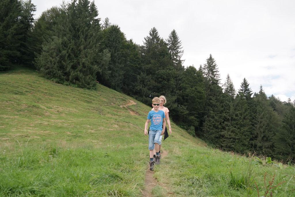 Gevarieerd wandelen in bossen, bergdalen en weilanden.
