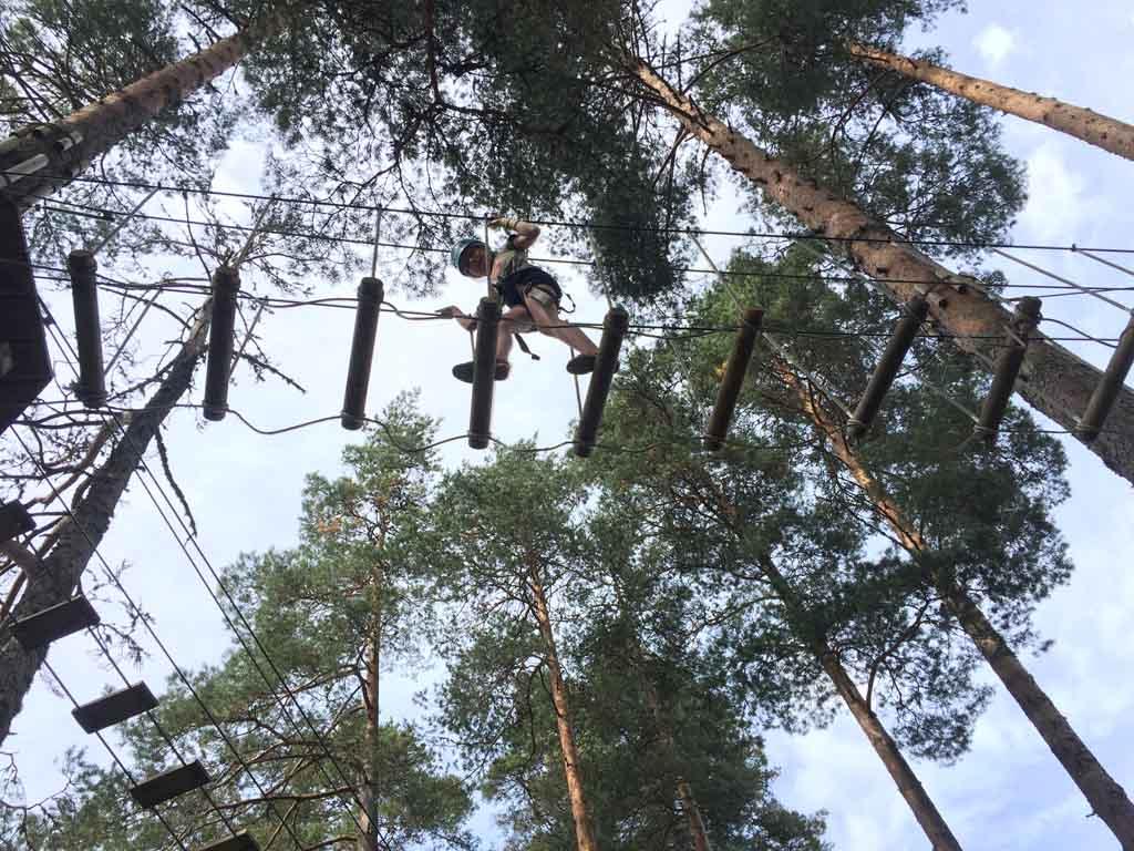 De onderdelen in Junior Park liggen ook best hoog in de bomen in Mineralparken