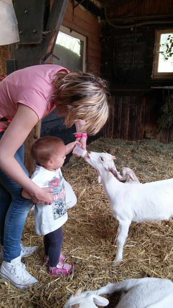 Kleine dierenparken zoals geitenboerderijen zijn zeer geschikt.