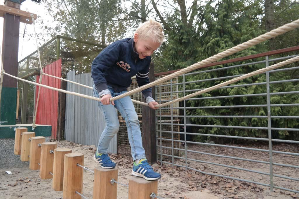 Klimparcoursen in Dinoland bieden uitdaging en plezier.