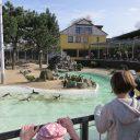 Dierenpark Aken: een dierentuin, kinderboerderij en speeltuin in één