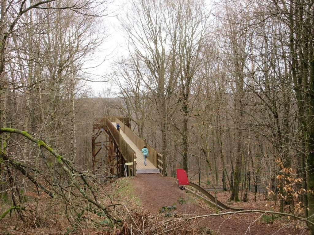 Deze brug brengt je naar een plek in het bos waar je kunt turen naar dieren