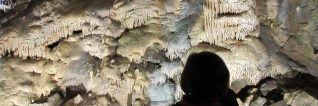Bezoek de grotten van Hotton in de Belgische Ardennen met kinderen