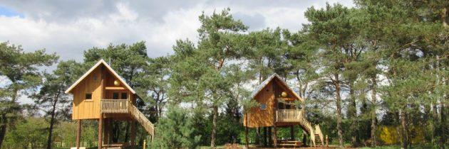 Camping De Wije Werelt: slapen in een unieke boomhut op de Veluwe