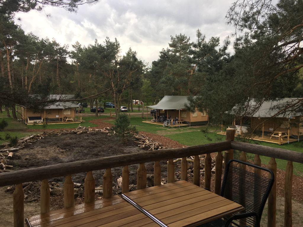 Uitkijken op het veldje met de safari-lodges en het ruige stukje natuur