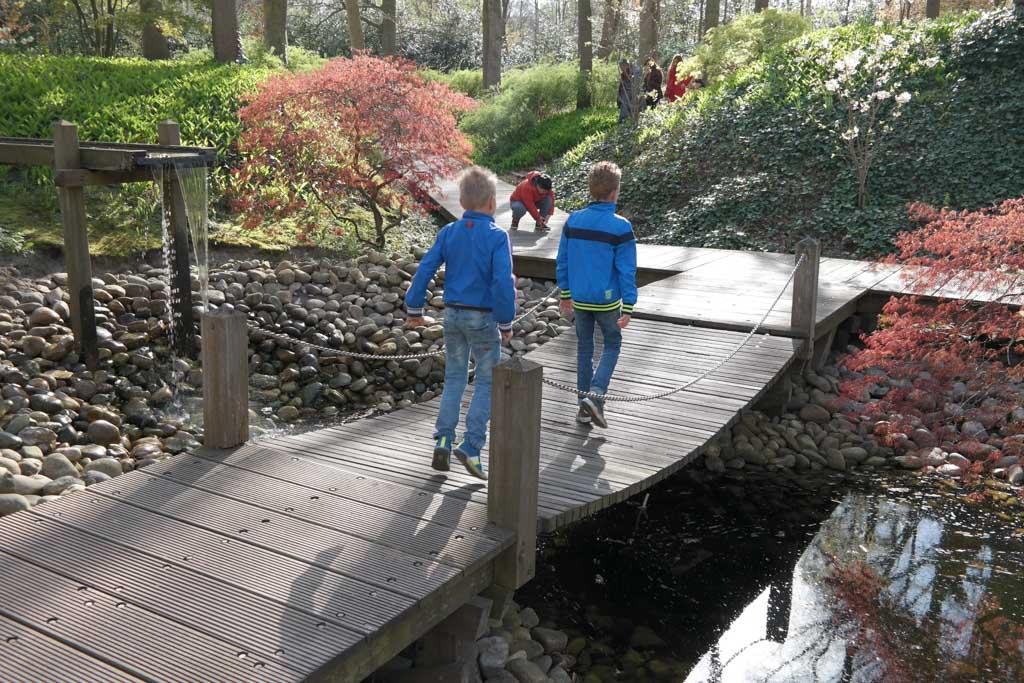 Leuke paadjes en bruggetje in dit deel van het park.