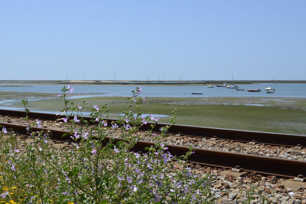 Achter het spoor begint het Ria Formoso Natural Park